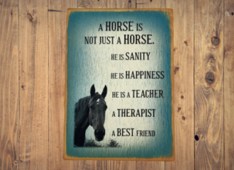 Not Just A Horse